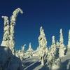 2005 0221Image0058 - Winter in Salla
