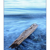 Kye Bay Driftwood blue - Landscapes