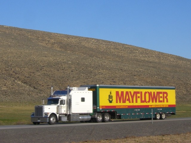 CIMG8289 Trucks