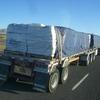CIMG8292 - Trucks