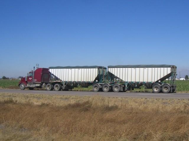 CIMG8315 Trucks