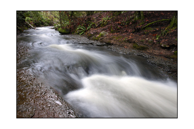 stotan falls Nature Images