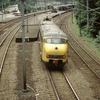 DT0976 926 Baarn - 19870728 Treinreis door Ned...