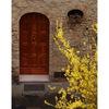 -San Gimignano 15fx - Italy photos