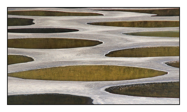 Spotted lake detail 35mm photos