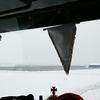 17-12-2009 006-border - eind 2009