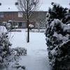 René Vriezen 2009-12-20 #0002 - Presikhaaf Sneeuw rond om h...