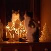 03-01-2010 010 - neo 1