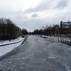 P1130486 - sneeuw
