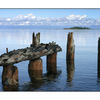 UNION Bay - Comox Valley