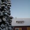 navetta - Winter pictures
