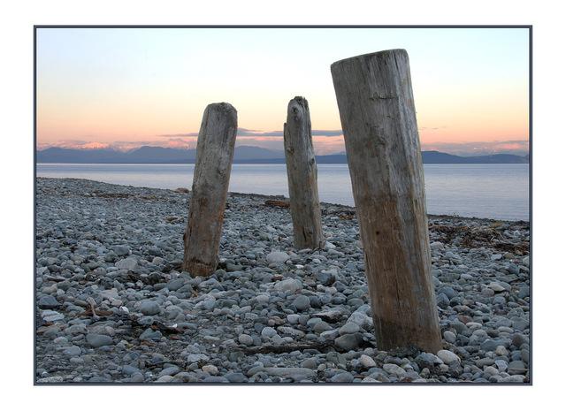 goose spit posts Landscapes