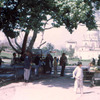 kabul park2 - Afghanstan 1971, on the road
