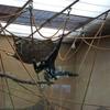 DSC 1616 - Burgers Zoo