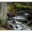 luppin falls - Nature Images
