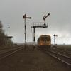 DT2007 3117 Zuidbroek - 19880312 Scheemda Zuidbroek...