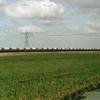 DT2090 2411 Meeden - 19880413 Scheemda Zuidbroek