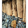 Posts and Rocks - Nature Images