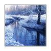 snowy dear lake - 35mm photos