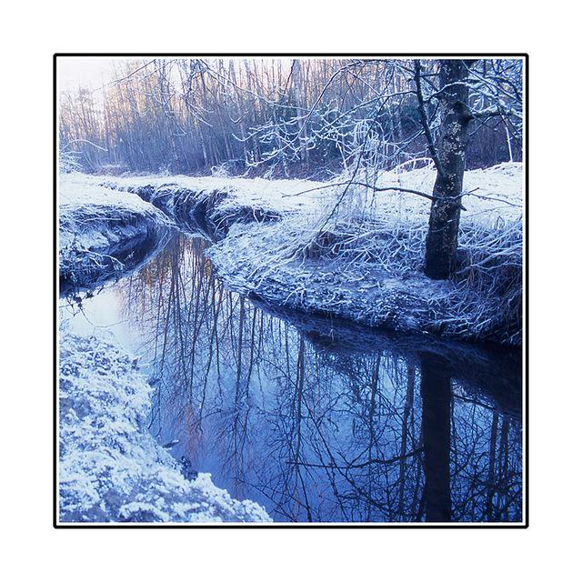 snowy dear lake 35mm photos