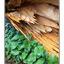 Fallen Cedar with CANADIAN ... - 35mm photos