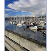 comox docks 05 - Comox Valley