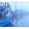 Foggy Boats - Comox Valley
