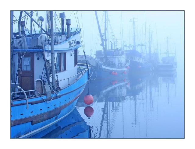 Foggy Boats Comox Valley