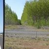e1cfe1e4a01d4a0f - Fotosik - Maj 2009