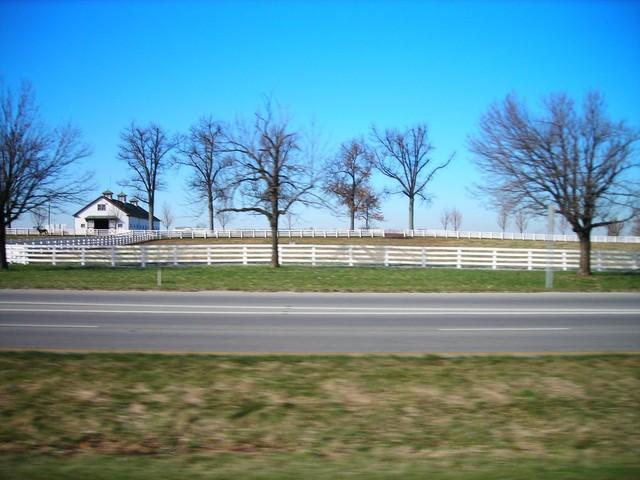 i0613 Fotosik - Widoki z trasy