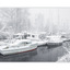 snow and boats - Comox Valley