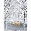 snowy yellow boat  - Comox Valley