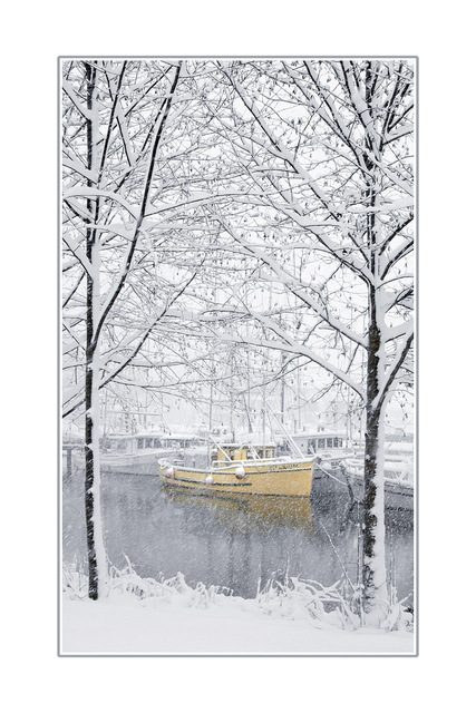 snowy yellow boat  Comox Valley