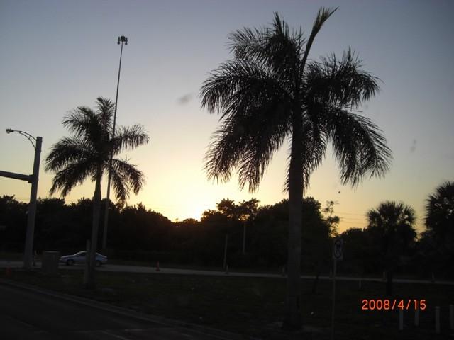 z0400 Fotosik - April 2008