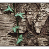 Vine on Bark - Close-Up Photography