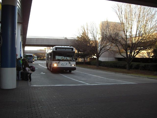 foto0319 Fotosik - Autobusy