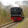 T02135 996101 Silberhutte - 20100404 Harz