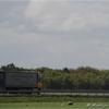 DSC 0883-border - Vrachtwagens