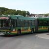 IMG 5503 - May 2010