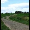 Dijkweg - Nature calls
