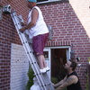 Vogelhuisjes weer ophangen ... - Klimop verwijderen en meer ...