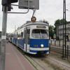 IMG 7310 - Polska 2010