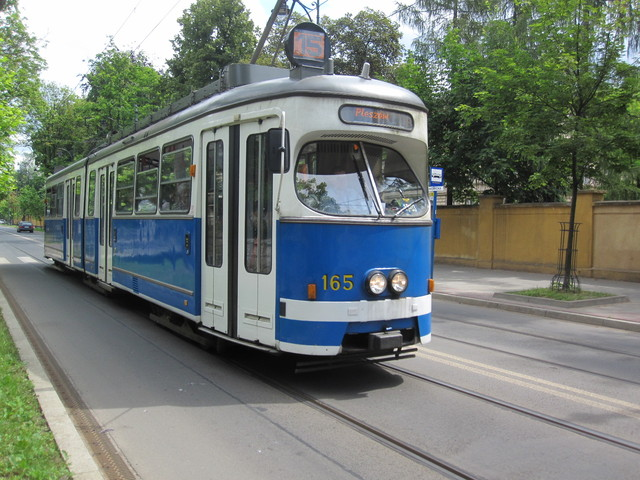 IMG 8399 Polska 2010