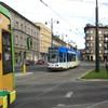 IMG 8310 - Polska 2010
