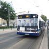 IMG 8298 - Polska 2010