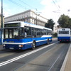 IMG 8317 - Polska 2010