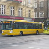 IMG 8340 - Polska 2010