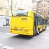 IMG 8349 - Polska 2010