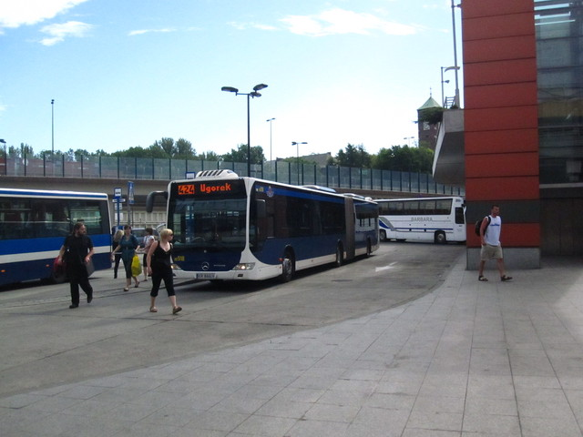 IMG 8383 Polska 2010