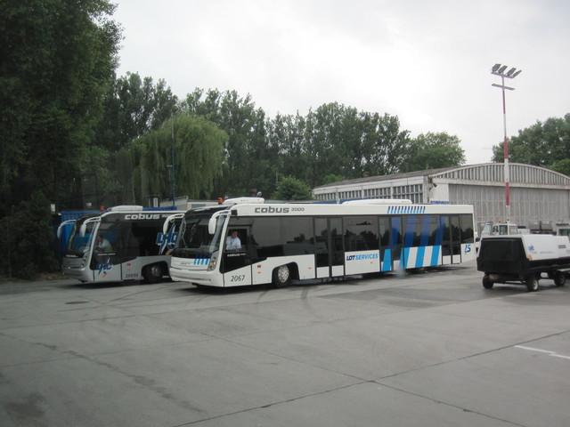 IMG 8436 Polska 2010